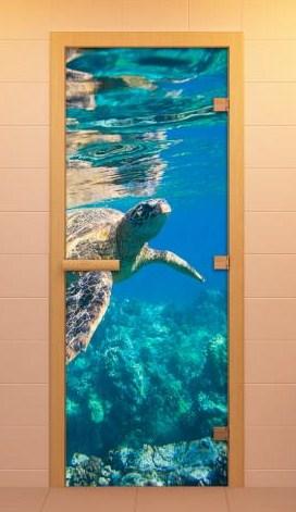 Дверь ALDO Водный Мир
